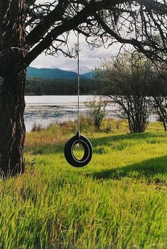 we like tire swings hanging from big ole trees