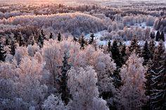 #winter #snow #mood #sun