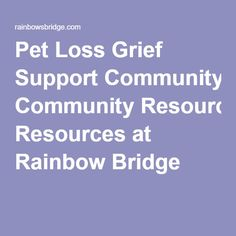 Full Sizes Rainbow Bridges Poems Dogs And The