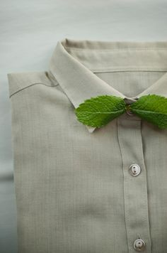 . mints, inspiration, photograph, kathrin koschitzki, button, bow ties, green, dress up, leaves