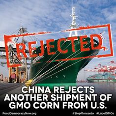 China Rejects Another Shipment Of GMO Corn From U.S. Read More Here: http://www.latimes.com/business/money/la-fi-mo-china-rejects-shipment-of-gmo-corn-20131227,0,2126813.story#ixzz2owQB6KUz