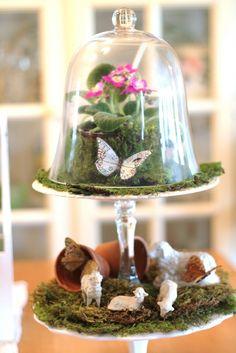 Tiered terrarium...