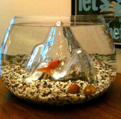 Gold fish bowls on pinterest fish tanks aquarium and fish for Umbra fish hotel
