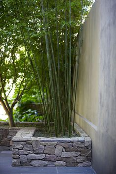 I love & admire this... is that bamboo growing?  Not sure if I could grow it up north in Toronto.  Love the rock wall- Courtyard Garden