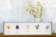 rock collection display - easy to DIY