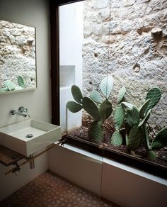 I just love this concept... I'd take this and replace the prickly pear with ferns and orchids, and the framing with something warm and rustic, like cedar.  A waterfall fountain trickling down the stone wall with some thick clumps of moss around it would finish the look!