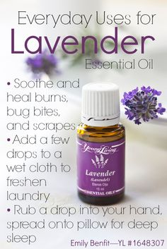 Love lavender? Learn more about the everyday uses for lavender essential oil (plus a GIVEAWAY!)