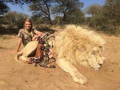 Texas Cheerleader Kendall Jones Sparks Online Outrage with Hunting Photos  I  don't understand why she in not arrested..she admits to killing white rhinos..