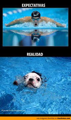 Expectativas y realidad: Nadando.