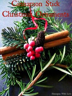 Cinnamon Stick Christmas Ornaments