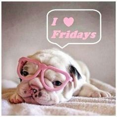 Friday! Happy Friday from Lake Orion, Michigan's #Spa on the Lake! We have our Pedicures on special right now - they include a free #Pumpkin spice #upgrade!! Call us if you need to schedule an appointment (248) 693-2999