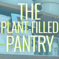 Plant-Filled Pantries!