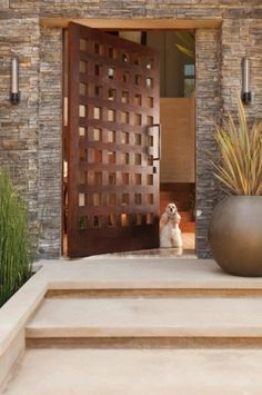 I love this front door, and the dog is cute too.
