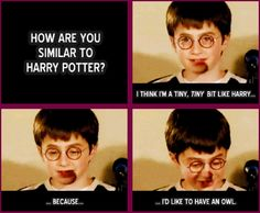 How are you similar to Harry Potter?