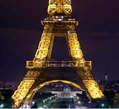$49 French & Cheese For Travelers (65% Value) http://www.whooplon.com