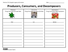 Worksheets Producers And Consumers Worksheet producers and consumers worksheets sharebrowse pictures producer consumer worksheet beatlesblogcarnival
