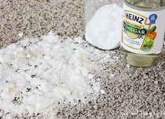 How to get rid of Pet Stains on your carpet: http://myhoneysplace.com/even-more-the-best-only-diy-projects/