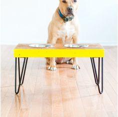 home remedies, beds, brick, food stations, dog bowls, pet food, homes, apartments, diy pet