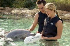 Discovery Cove Offer
