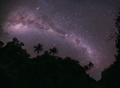 """""""Galactic Paradise,"""" by Tunç Tezel. Winner in Earth & Space category of Astronomy Photographer of the Year 2011. It's an image of the Milky Way above the exotic landscape of Mangaia in the Cook Islands. It clearly shows the dark nebulae which form the object known as the Emu in Australian Aboriginal astronomy. ©Mona Evans, """"Astronomy Photographer of the Year 2011"""" http://www.bellaonline.com/articles/art50195.asp"""