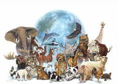 ¿Por qúe hay tantos tipos de alimentación en los animales?