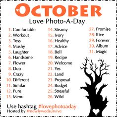 Photo a Day Challenge: October