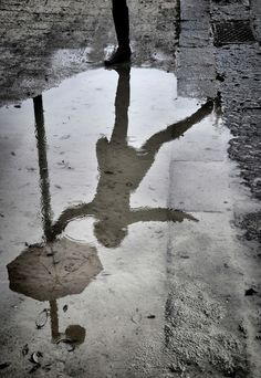 Singing In The Rain - love this!