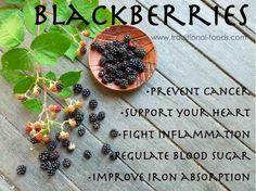 Blackberries super antioxidant  helps our bodies  fight free radicals.    www.naturesupplies.co.uk