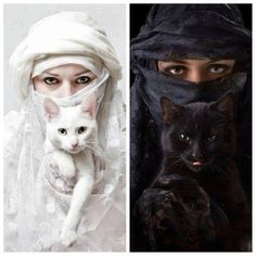 anim, cat women, white cats, black white, blanco y negro, art sculptures, beauti, kitty, eyes