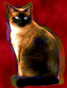 cats+siamese+art   Notes: CoCo is one cool Siamese Kitty. We have created a painterly ...