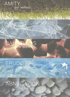 Divergent Factions ~ Amity, Candor, Dauntless, Erudite, Abnegation