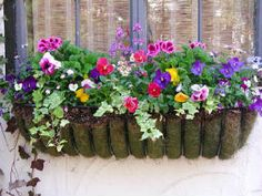 window box....colorful