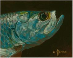 Tarpon fli fish, saltwat fish, offshor fish, art, inspir, pwetti tarpon