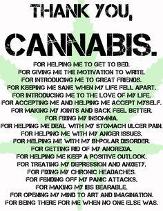 Thank you, Cannabis