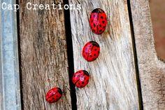 rock ladybugs!