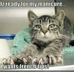 or better yet resembles a client with an overdue pedi and of course has no shame in their game lol