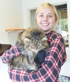 Cadberri and her new mom - celebrations all round! Meet more fabulous felines looking for their forever pet parents: http://www.paws.org/cats-and-dogs/adopt/available-pets/ #AdoptaCat