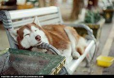 resting-a-smidge