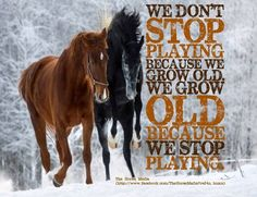 """""""We don't stop playing because we grow old. We grow old because we stop playing."""""""