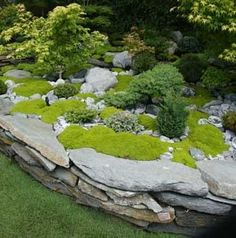 Rock and moss. Very cool!