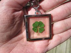 Neat idea to keep your lucky clover with you!