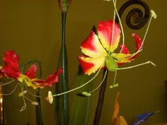 Flame Lily by Sheila Brooks from Tropical Flower Class at Cake Craft Shoppe
