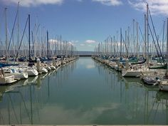 Don's twitter feed: https://twitter.com/@don_falcone/     ***************************************** Pic: Don's photo of South Beach Harbor, San Francisco, CA taken from AT&T Park
