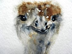 ACEO Original Watercolor Painting Ostrich Bird by pinetreeart