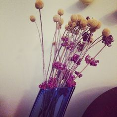 Billy buttons and my dried Callicarpa. Love this purple and yellow.