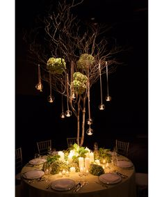 """""""They wanted something very magical. This design was all about choosing things in nature and making them come alive. That's why you see those little tea lights in globes hanging from the tree with no leaves. We wanted to make it look like there were fireflies in the room itself."""""""