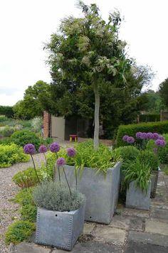 DIY: Vintage Troughs as Planters. flower arrang, purple flowers, planters