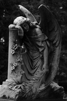cemetery angels, headston art, beauti, angel statu, cemeteri art, mourn angel, cemeteri angel, angel weep, stone angels