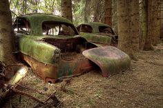 Old car graveyard.