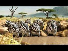 ROLLIN' SAFARI - 'The Waterhole' - Official Trailer FMX 2013